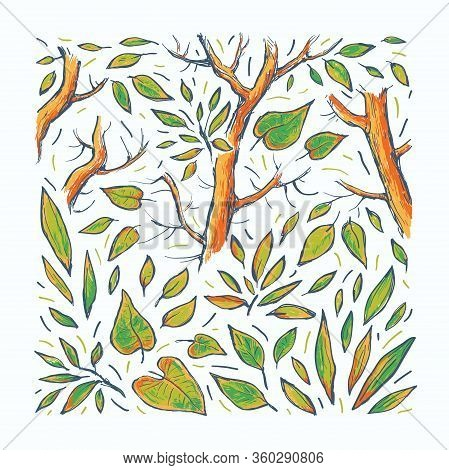 Forest Vector Hand Drawn Illustration. Abstract Summer Background. Multicolor Drawing Trees On White