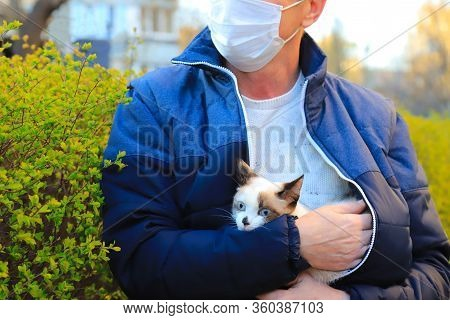 Man In Medical Mask Is Walking With A Cute Kitten On The Street During The Coronavirus Covid-19 Quar