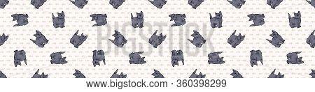 Cute Cartoon British Shorthair Kitten Seamless Border Pattern. Pedigree Kitty Breed Domestic Kitty B