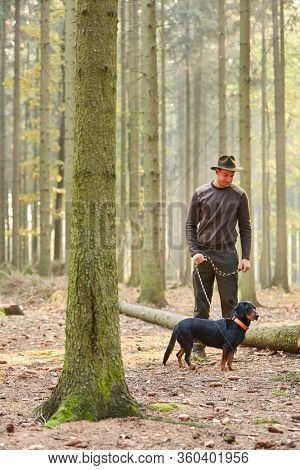 Forester goes for a walk with a hound as a hunting dog or a sweat dog in the forest