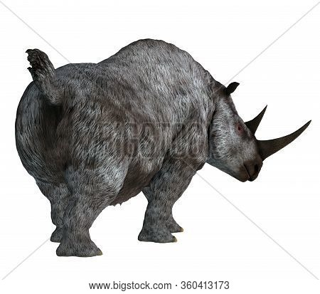 Woolly Rhino Tail 3d Illustration - The Woolly Rhino Was A Herbivorous Rhinoceros That Lived In Asia