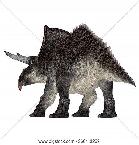 Zuniceratops Dinosaur Tail 3d Illustration - Zuniceratops Was A Herbivorous Ceratopsian Dinosaur Tha