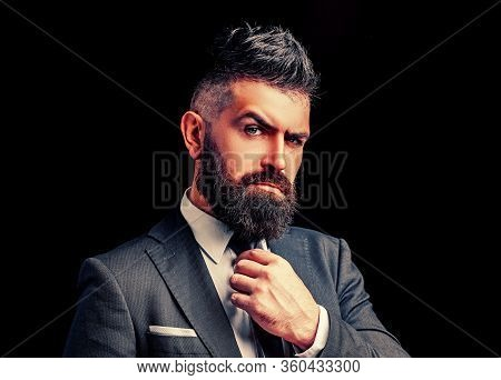 Bow-tie Fashion. Bearded Man In Dark Grey Suit. Man In Classic Suit, Shirt And Tie. Rich Man Model.