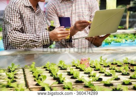 Smart Agriculture Technology Concept - Farmer Ckecking Water Ph Value Of Organic Hydroponic Red Oak