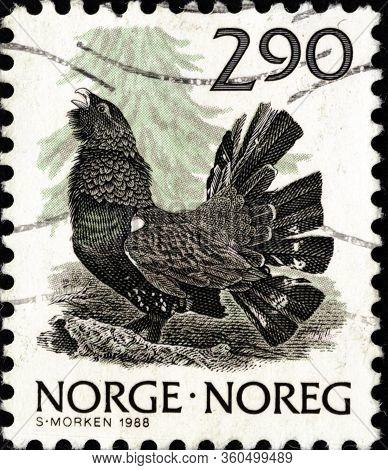 02 11 2020 Divnoe Stavropol Krai Russia Postage Stamp Norway 1988 Animals Tetrao Urogallus Western C