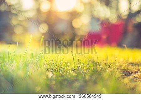Sunset Over Mountain With Meadow Grass Backlit Glow Against The Sunlight With Sun Flare And Bokeh. A