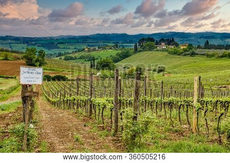 Tuscany, Italy - May 2, 2013: The Farmlands Of Tuscany In Italy Still Produces Excellent Grapes For