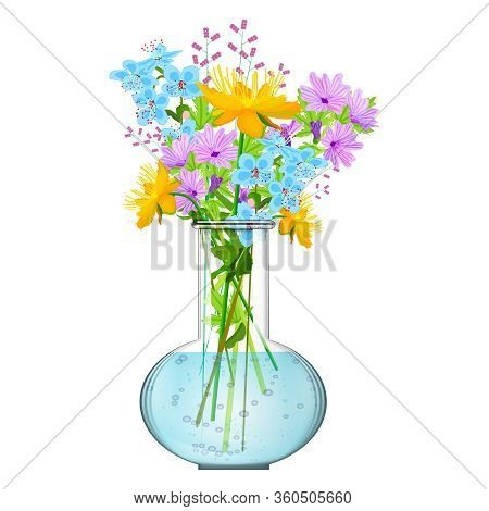 Bouquet Of Flowers In The Vase Isolated On White Background. Bunch Of Wildflowers In A Glasses Vase.