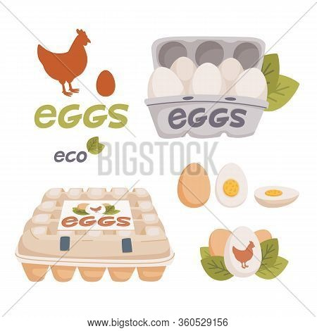 Set Of Chicken And Quail Eggs In Different Forms Raw, Boiled And Fried And In Carton Boxes. Organic