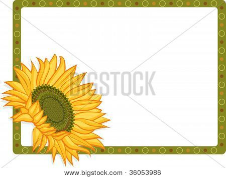 Sunflower with 2 borders