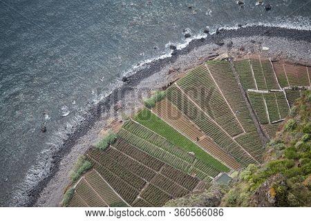 Portugal Madeira Ponta Do Sol Agriculture