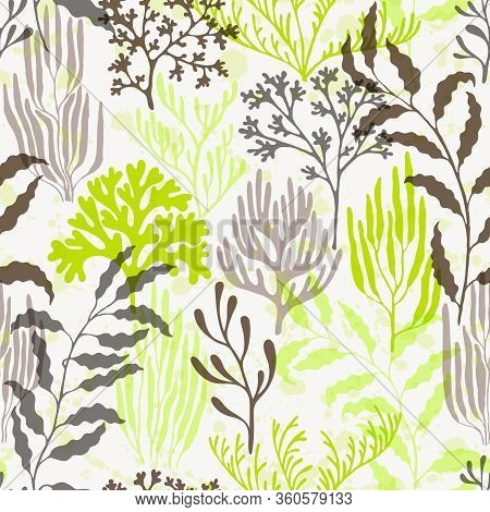 Coral Polyps Seamless Pattern. Kelp Laminaria Seaweed Algae Background. Organic Botanical Pattern. M