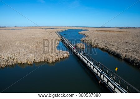 Environmental View Of Point Pelee National Park Marsh Boardwalk In Spring
