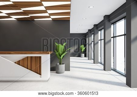Interior Of Stylish Corporate Office Waiting Room With Grey Walls, Tiled Floor, White And Wooden Rec