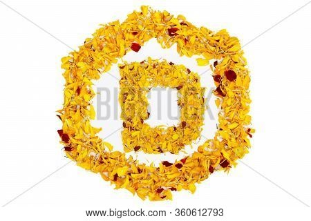 Letter D In Spring Flower Petal Hexagon. Marigold Petal Alphabet Isolated On White Background.