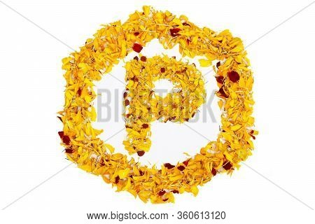 Letter P In Spring Flower Petal Hexagon. Marigold Petal Alphabet Isolated On White Background.