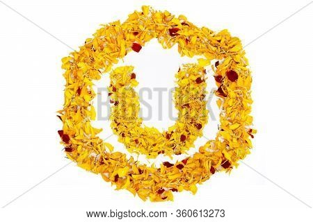 Letter U In Spring Flower Petal Hexagon. Marigold Petal Alphabet Isolated On White Background.