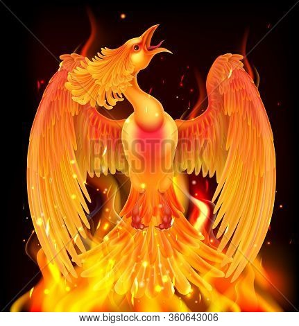 A Phoenix Bird Rising From Flames, Fire And Ashes