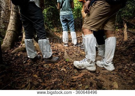 Legs Of Asian Hikers Covered By White Long Socks On Tropical Forest Trekking Trail To Protect Legs F