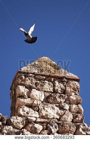 Pigeon Takes Flight From An Ancient Stone Battlement.