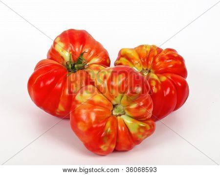 old seed of domestic tomato without of GMO poster