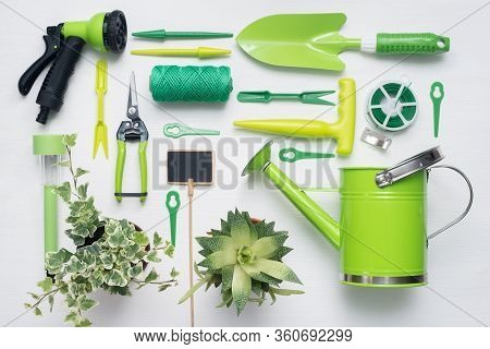 Gardening Tools And Green Plants In Flower Pots On White Wooden Table Background. Flat Lay.