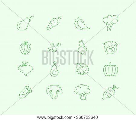 Set Of Flat Vegetables. Healthy Food. Salad, Carrot, Broccoli, Potato, Mushroom, Agriculture. Hand D