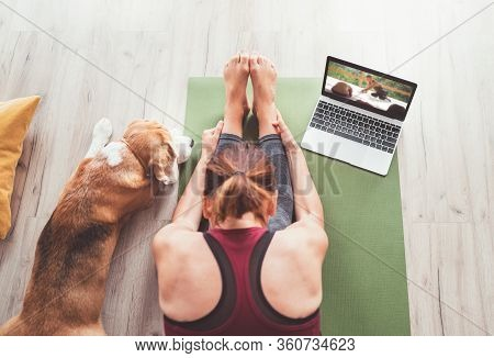 Active, Adult, Animal, Asana, Athlete, Athletic, Beagle, Body, Breathing, Caucasian, Computer, Dog,