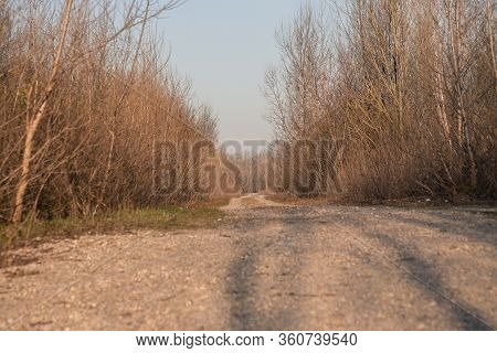 Long Straight Country Road