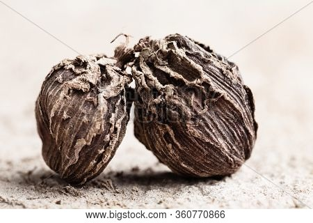 Black Cardamom Two Pieces Indian Spice