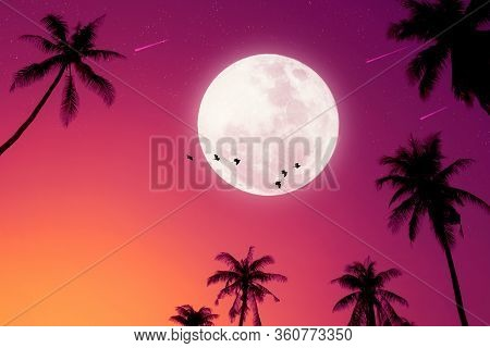 Tropical Night. Full Moon And Palm Leaf Birds Fly Abstract Background.