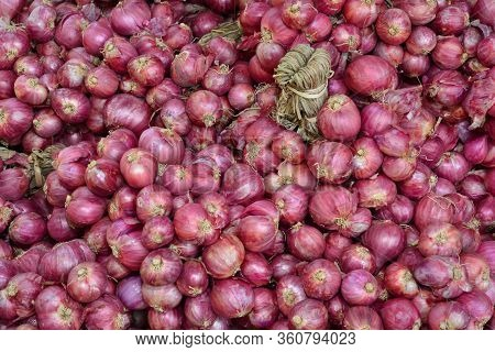 The Shallot Is A Type Of Onion, Specifically A Botanical Variety Of The Species Allium Cepa