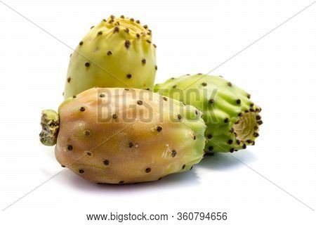 Prickly Pear Isolated On White Background Cut Out