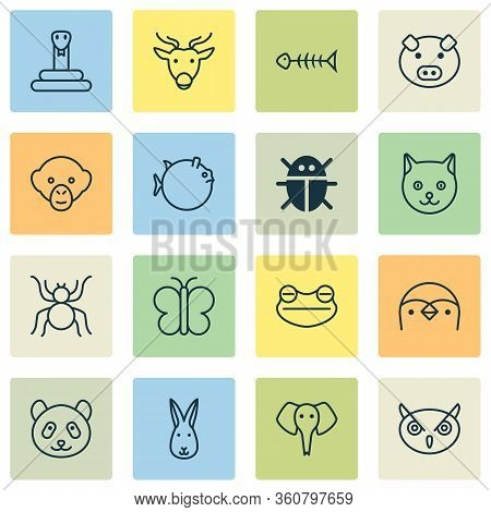 Nature Icons Set With Fish Bone, Panda, Elephant Butterflyfish Elements. Isolated Vector Illustratio