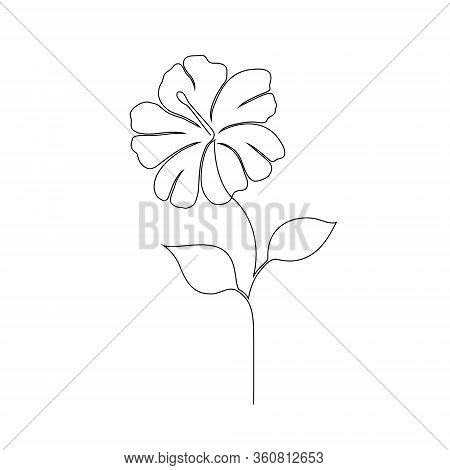 Hibiscus Flower On White Background. One Line Drawing Style.