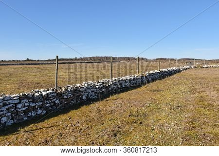 Dry Stone Wall In A Plain Grassland On The Island Oland In Sweden