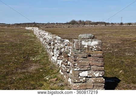 Traditional Dry Stone Wall On The Great Alvar Landscape On The Island Oland In Sweden