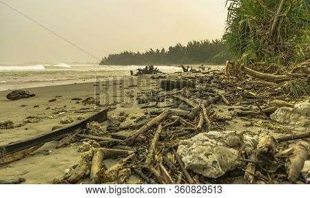 Wild Untouched Dirty Beach Scene With Many Drift Wood On The Shore Because Of High Waves. Haze And G