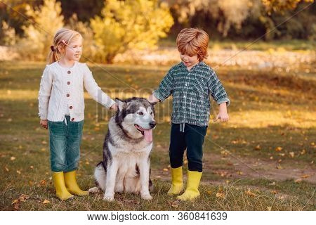 Happy Little Children Having Fun With Dog Pet On Field. Child 5 Years Old. Carefree Childhood. Kids