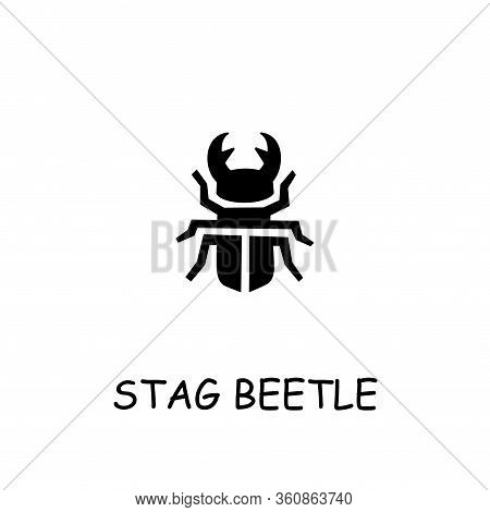 Stag Beetle Flat Vector Icon. Hand Drawn Style Design Illustrations.