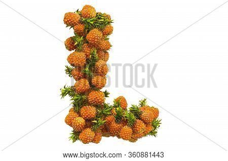 Letter L From Pineapples, 3d Rendering Isolated On  White Background