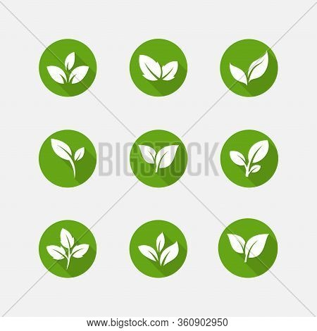 Flat Leaves Icon Pack. Leaf Vector Illustration, Green Leaf Ecology Nature Element Vector Icon, Leaf
