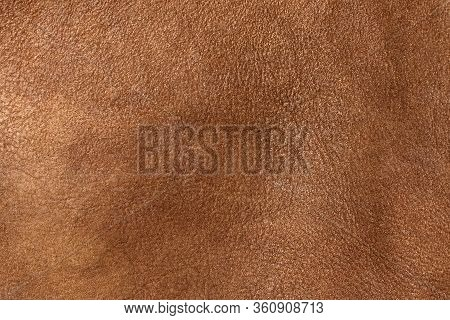 Brown Leather Of Wild Animal, Texture . Leather Background, Brown Color. Close Up. Brown Leather Tex