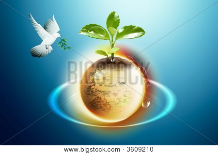 Earth And Pigeon