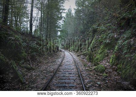 Goldstream Railway Trestle Is Located In Goldstream Provincial Park In Canada