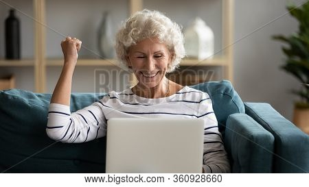 Excited Older Woman Looking At Laptop Screen, Rejoicing Win