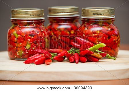 Calabrian peppers in oil hot pepper very hot chili
