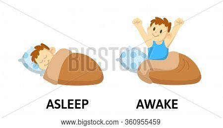 Words Asleep And Awake Flashcard With Cartoon Characters. Opposite Adjectives Explanation Card. Flat