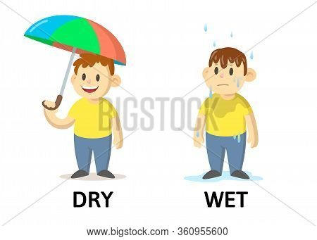 Words Dry And Wet Flashcard With Cartoon Characters. Opposite Adjectives Explanation Card. Flat Vect