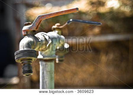 Water Spots